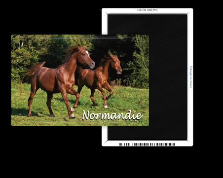 Magnet 55x80 - Les chevaux